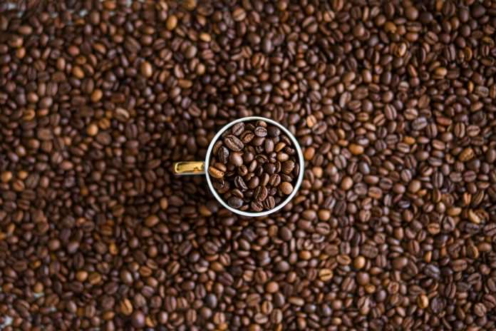 A picture of a coffee scoop buried in coffee beans.